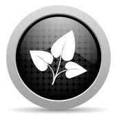 Eco czarne koło Www błyszczący ikona — Zdjęcie stockowe