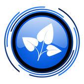 Eco blau glänzend kreissymbol — Stockfoto