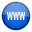 Www icon — Stock Photo #27790347