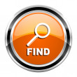 Find icon — Stock Photo #30414965