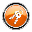 Stock Photo: Keys icon