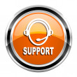 Support icon — Stock Photo #30415483