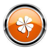 Four-leaf clover icon — Stock Photo