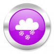 Snowing icon — Stock Photo #30562609