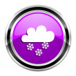 Snowing icon — Stock Photo #31041155
