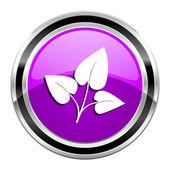Eco icon — Stock Photo
