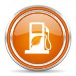 Biofuel icon — Stock Photo #31508697