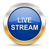 Live stream ikona — Stock fotografie