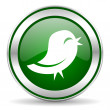 Twitter icon — Stock fotografie
