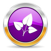 Leaf icon — Stock Photo