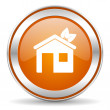 Stock Photo: House icon