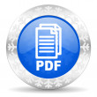 Pdf christmas icon, — Stock Photo