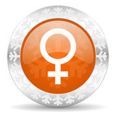Icono femenino — Foto de Stock