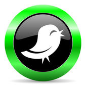 Twitter icon — Fotografia Stock