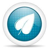 Blad pictogram — Stockfoto