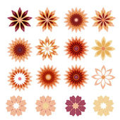 Beautiful floral background, vector — Stock Vector