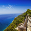 Stock Photo: Seacliff with fence, viewpoint