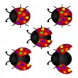 Stock Vector: Colorful set of Ladybird, vector