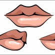 Stock Vector: Hot Sensual Mouth, vector