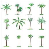Plam tree set — Stock Vector