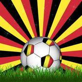 Pallone da calcio belgio — Vettoriale Stock