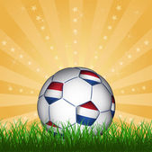 Netherland soccer ball — Stock Vector