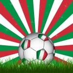 Italy soccer ball — Stock Vector #48507697
