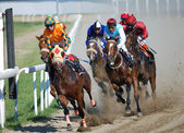 BELGRADE, SERBIA - JUN 16,2013:undefined group of Jockeys on Race Horses during race on Belgrade hippodrome — Foto de Stock