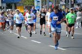 A group of marathon   competitors during the 27th Belgrade Marathon on   April 27, 2014 in Belgrade, Serbia — Stock Photo