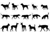 Dogs collection silhouettes — Stock Vector