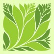 green leaf — Stock Vector