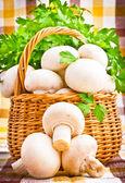 Wicker basket full of fresh champignon mushrooms — Stock Photo