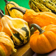 Several decorative pumpkins squash fruits for halloween — 图库照片
