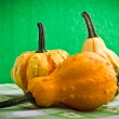 Several decorative pumpkins squash fruits for halloween - Stock Photo