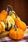 Birkaç dekoratif kabaklar Cadılar Bayramı için meyve squash — Stok fotoğraf