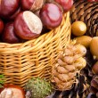 Wicker basket full of autumn acorns, cones and chestnuts — Stock Photo #13636527