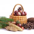 Wicker basket full of autumn acorns, cones and chestnuts — Stock Photo #13890276