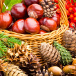 Wicker basket full of autumn acorns, cones and chestnuts — Stock Photo #13890831