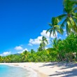 Stock Photo: Beautiful beach in Saint Lucia, CaribbeIslands