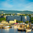 A view of the city of Oslo as seen from the Oslofjord — Stock Photo