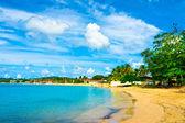 όμορφη παραλία στην αγία λουκία, νησιά της καραϊβικής — Φωτογραφία Αρχείου