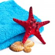 Blue towel with red starfish isolated on white background — Stock Photo #19391395