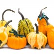 Decorative pumpkins squash isolated on white background — Stock Photo #19530573