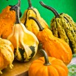 Several decorative pumpkins squash fruits — Stock Photo #19530915