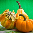 Several decorative pumpkins squash fruits — Stock Photo #19531303