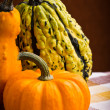 Several decorative pumpkins squash fruits — Stock Photo #19531377