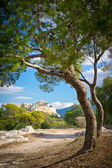 Beautiful view of ancient Acropolis, Athens, Greece — Stock Photo