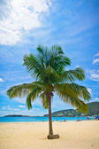 Beautiful beach in Philipsburg, Saint Maarten, Carribean Islands — Stock Photo