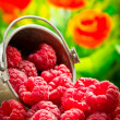 Delicious fruit berries in metal small pail — Stock Photo #31178969