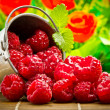 Delicious fruit berries in metal small pail — Stock Photo #31179191